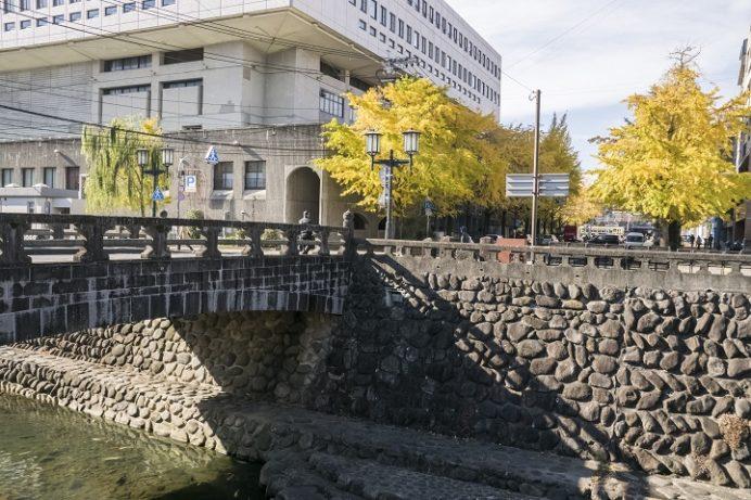桜町通りの銀杏並木通り (長崎市市民会館横)