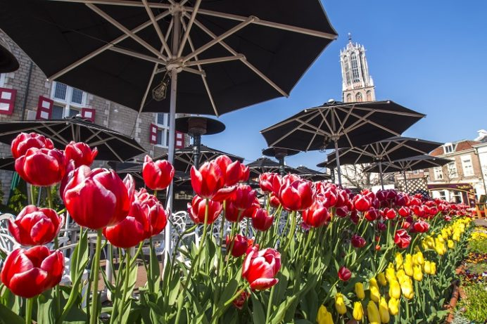 ハウステンボスのチューリップ祭(長崎県佐世保市)、アムステルダム広場