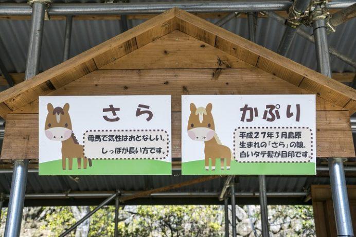 七面山妙光寺(長崎市鳴滝)