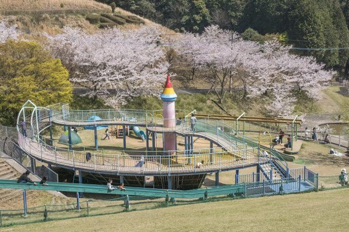 琴平スカイパーク(大村市原町)の桜と花見