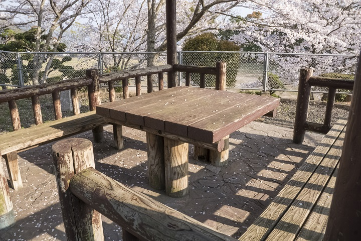 城山公園(長崎県東彼杵郡川棚町)の桜
