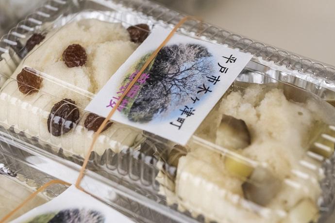 慈眼桜(平戸市木ヶ津カトリック教会付近)