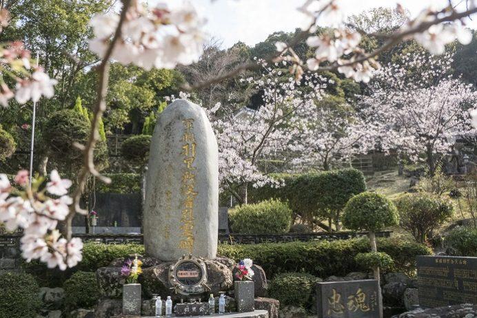 佐世保東山海軍墓地 東公園(佐世保市東山町)の桜と花見