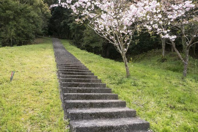 山の田浄水場(さくらの森公園)、佐世保市の桜木町)