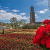 【見頃速報2021!満開はいつ?】「ハウステンボス 100万本のバラ祭」を現地レポ!~(5月8日(土)更新)