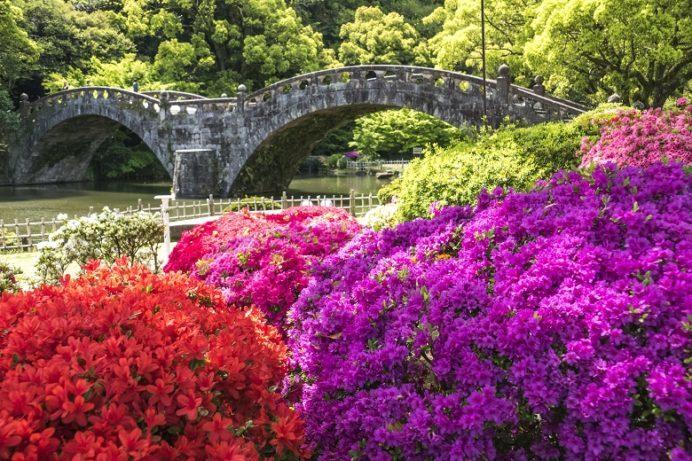 諫早つつじ祭り(長崎県諫早公園)、諫早眼鏡橋