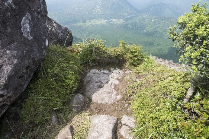 雲仙九千部岳(長崎県島原半島)の登山、ヤマボウシ