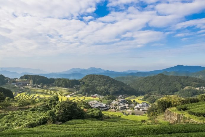 鬼木の棚田(東彼杵郡波佐見町鬼木郷)