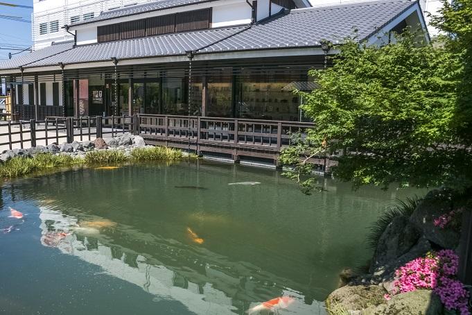 清流亭 鯉の泳ぐまち観光交流センター(島原市)