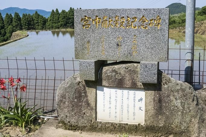 鬼木の棚田(東彼杵郡波佐見町鬼木郷)、鬼木水源の森