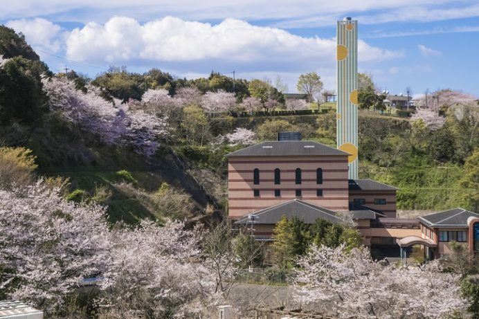 のぞみ公園 諫早市多良見町木床)の桜、花見