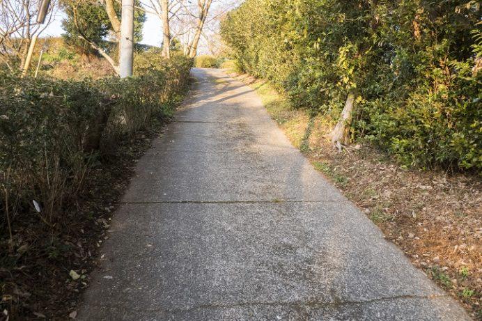 日岳公園(大村市日泊町)の初日の出