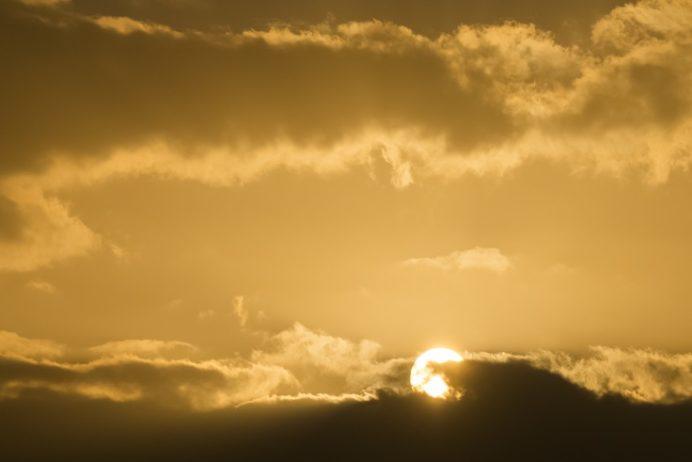 島原城(長崎県島原市城内)の初日の出(初日会)