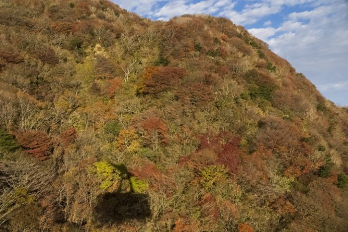雲仙ロープウェイ(長崎県仁田峠)と紅葉、妙見岳