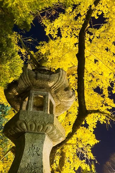 安勝寺の紅葉(長崎県諫早市)