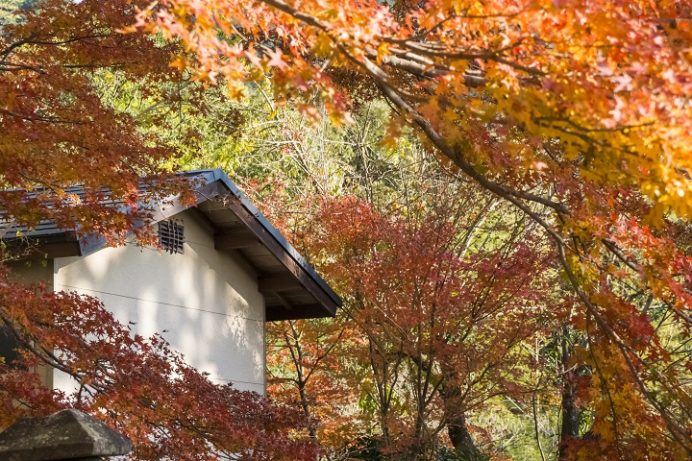 七面山妙光寺(長崎市)の紅葉