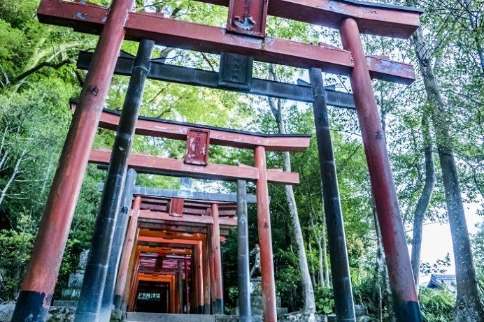 鎮西大社 諏訪神社(長崎市上西山町)の玉園稲荷神社