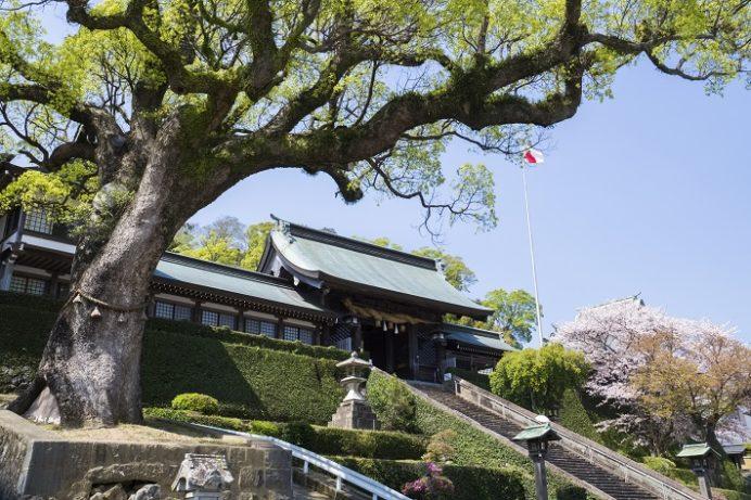 鎮西大社 諏訪神社(長崎市上西山町)の長坂と大門、クスノキ