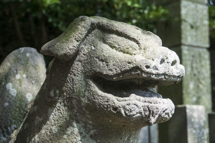 万寿山 聖福寺(長崎市玉園町)、狛犬