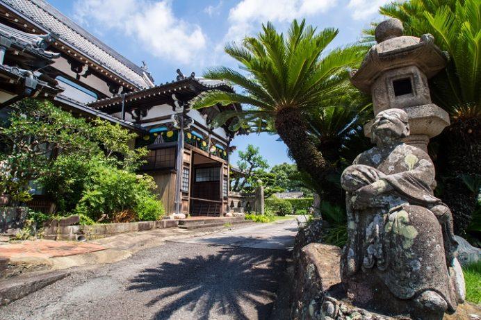 福済寺(長崎市筑後町)、被爆蘇鉄