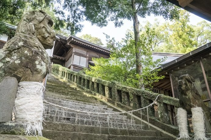 鎮西大社 諏訪神社(長崎市上西山町)の止め事成就の狛犬