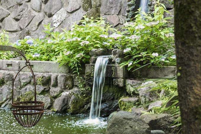 鎮西大社 諏訪神社(長崎市上西山町)の神池