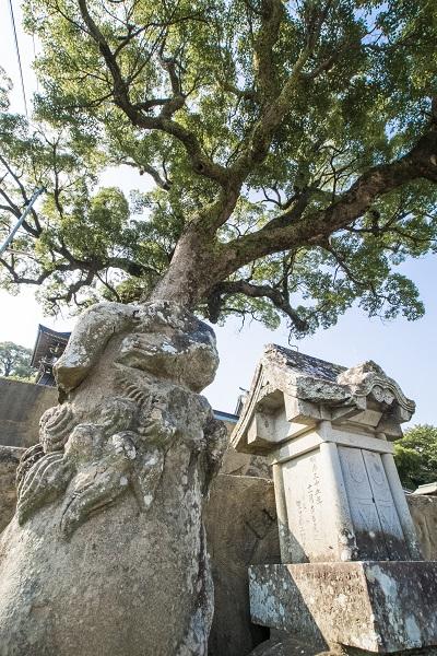 鎮西大社 諏訪神社(長崎市上西山町)、病魔除け狛犬