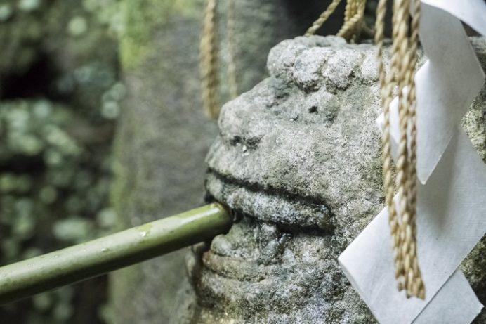 鎮西大社 諏訪神社(長崎市上西山町)の高麗(こま)犬の井戸 (銭洗の狛犬)