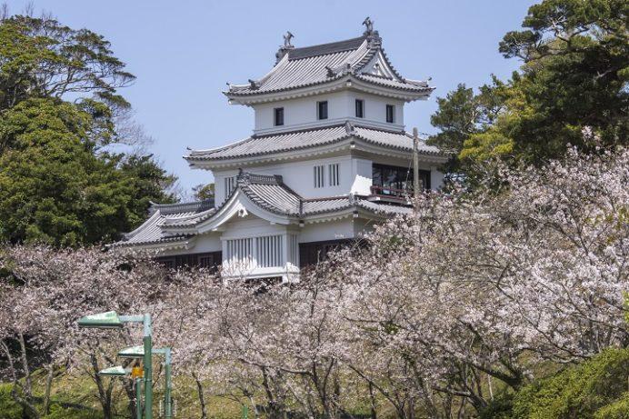 平戸城(亀岡公園)の桜と花見(平戸市岩の上町)