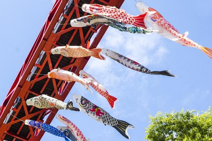 【大宇宙エモい】「中尾城公園の鯉のぼり」(長与町)