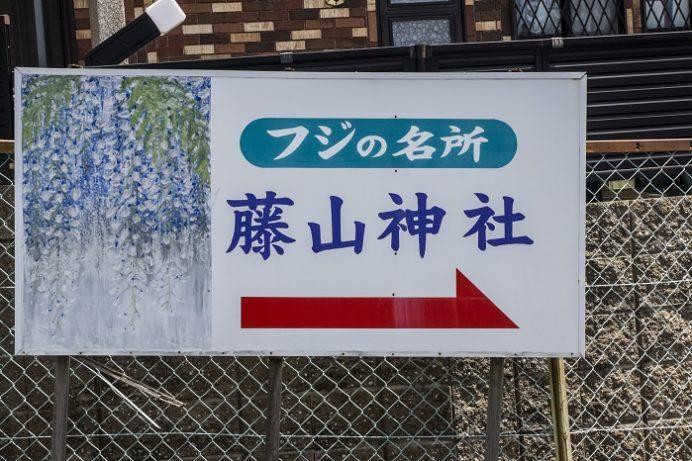 藤山神社(長崎県佐世保市)の藤(フジ)の駐車場