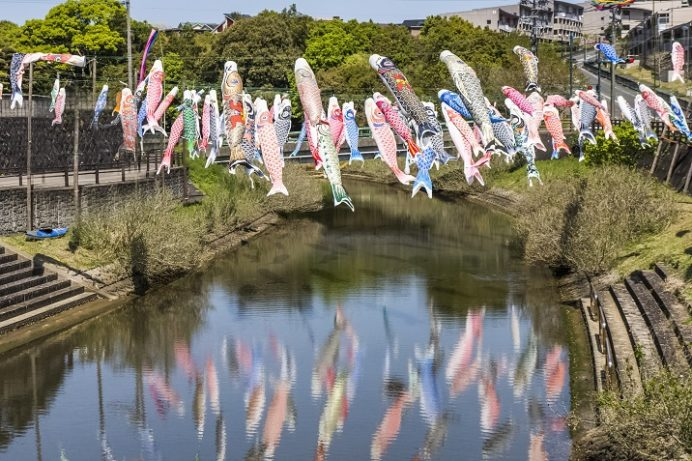 真崎川(諫早市)の鯉のぼり