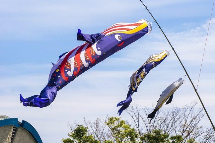 彼杵の荘(東彼杵町)の鯨の鯉のぼり