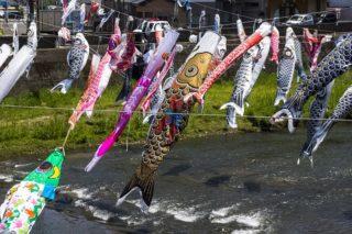 【佐世保人に告ぐ】「相浦川の鯉のぼり」が揚がってたYOー
