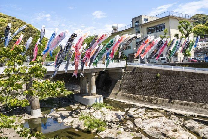 浦上川(西浦上小学校)の鯉のぼり(こいのぼり)