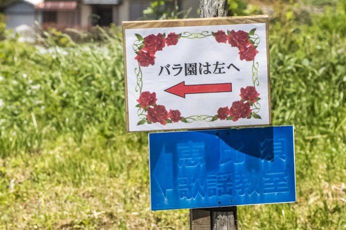 大室さんのバラ園(諫早市)