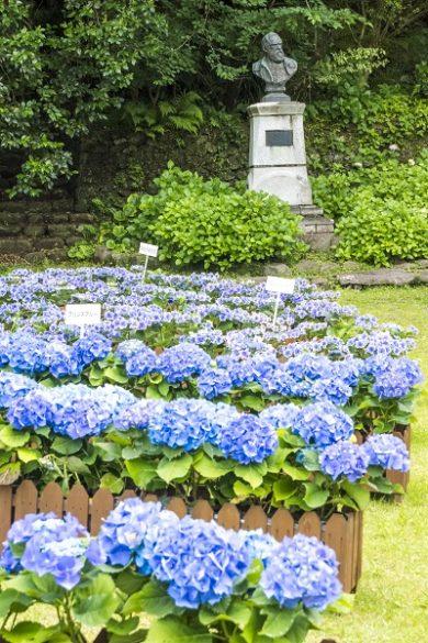 シーボルト記念館(長崎市鳴滝)